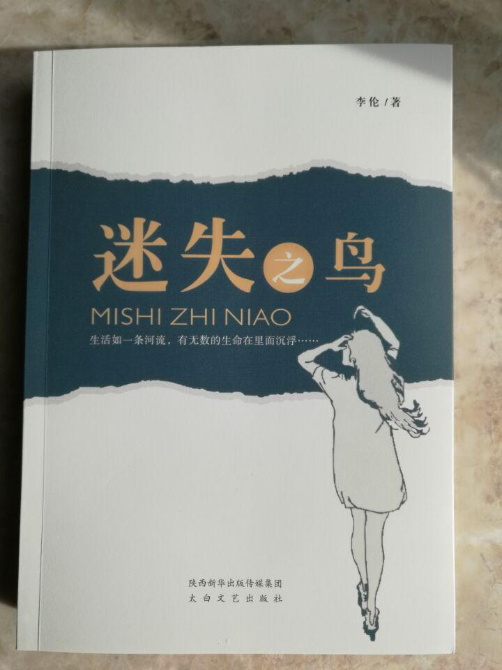 知名金融作家李伦长篇小说《迷失之鸟》出版